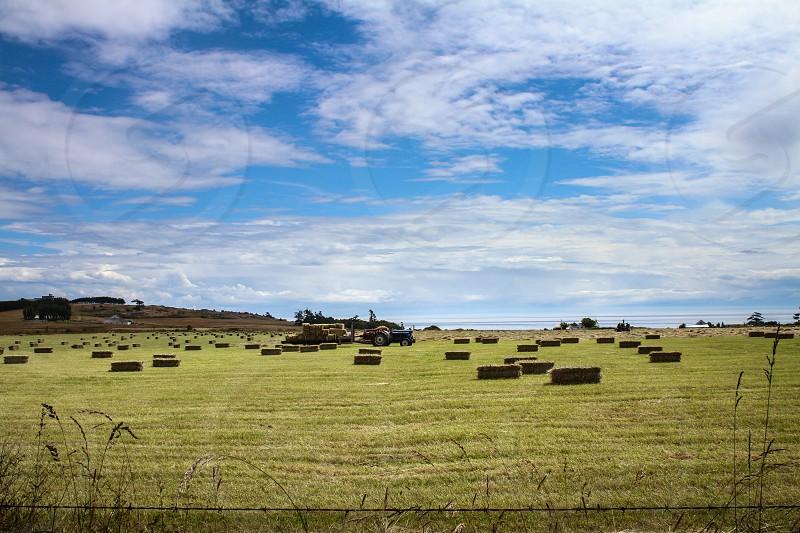 Hay Bales & Tractor Roche Harbor photo