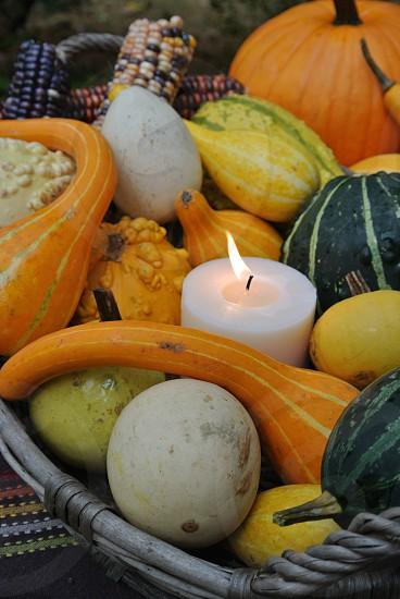 thanksgiving center piece photo