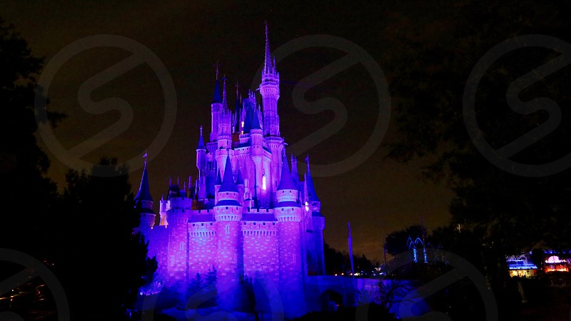 Castle lighting photo