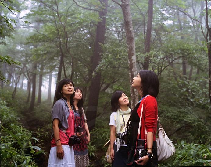 4 woman standing near tree photo
