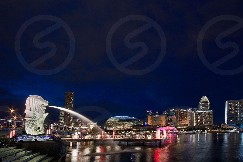 Mirlion in Singapore photo