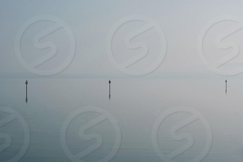 Stillness photo