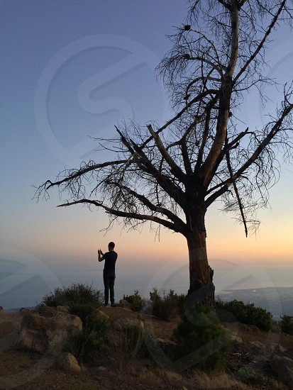 man standing on cliff with pine tree photo