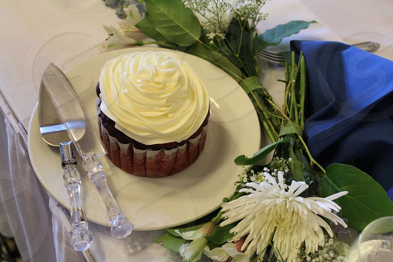 brown cupcake with white frosting on white plate photo