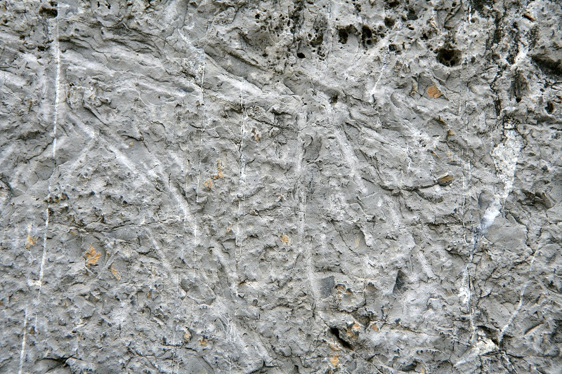 Background texture of a gray limestone surface photo