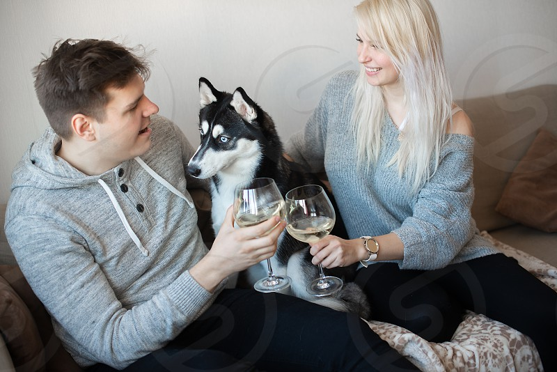 Celebrating anniversary. Young loving couple with cute husky dog sitting close to each other hugging and drinking white wine photo