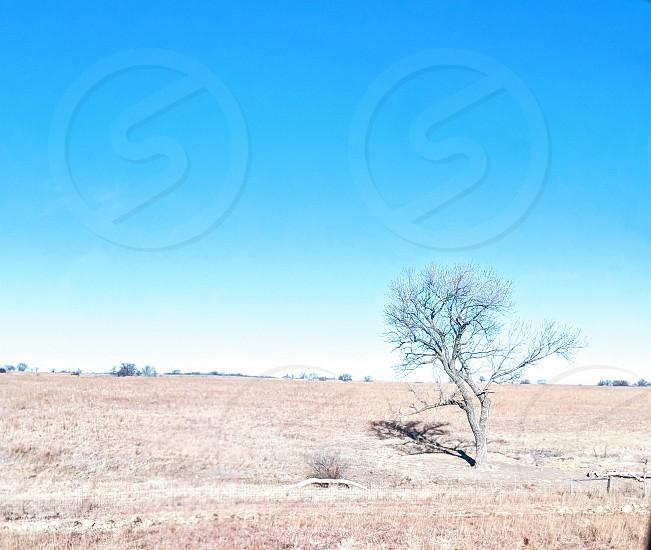 Kansas 18-2 photo
