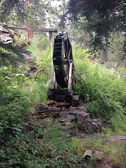 Water Mill behind Coney Island  Bailey Colorado  photo
