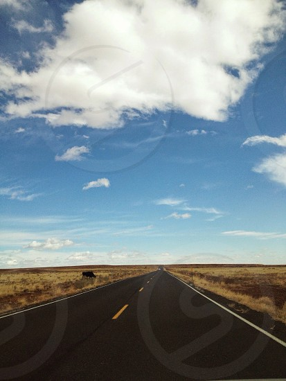 Wide Open Road photo