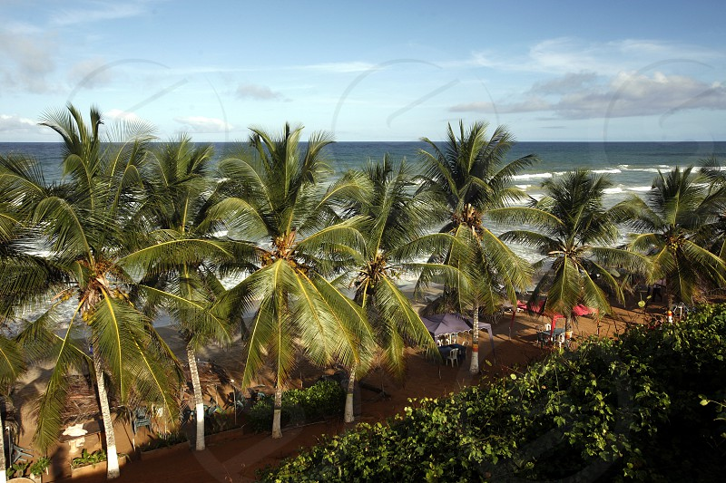 the Coast at the beach in the town of Cuacuco on the Isla Margarita in the caribbean sea of Venezuela. photo