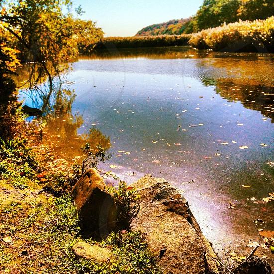 creek in NY photo