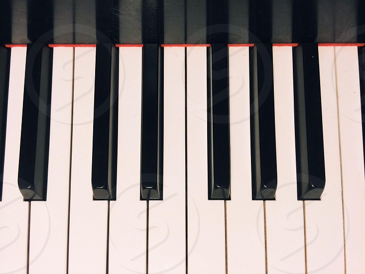 white and black piano key photo