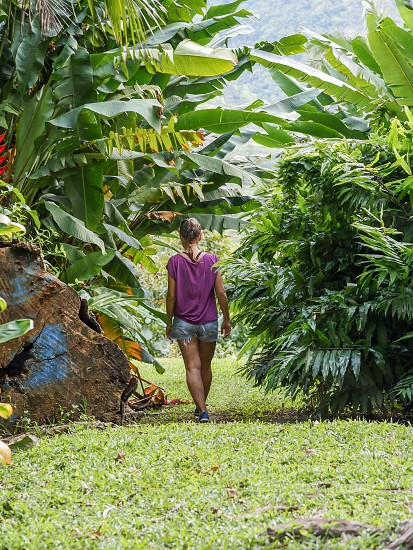 Woman walking into tropical nature environment Hawaii  photo