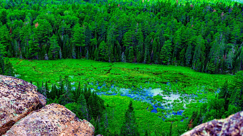 A view from a rocky cliff shows a forest surrounding an area of wetlands with a pond. photo