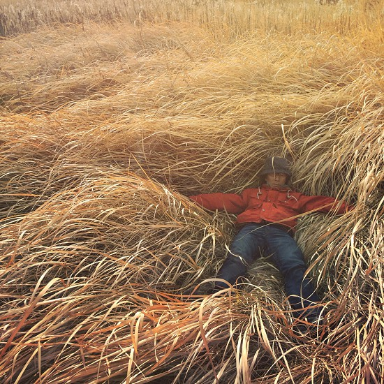 person lying on grass photo