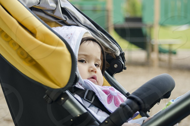 Little girl being taken to the park in he Stroller. photo