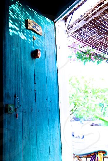 Blue Door photo
