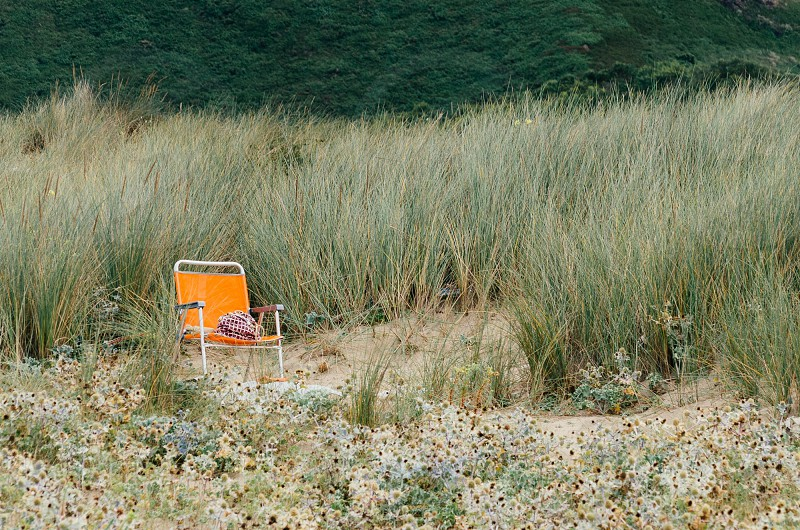 orange chair in the middle of tall gras photo