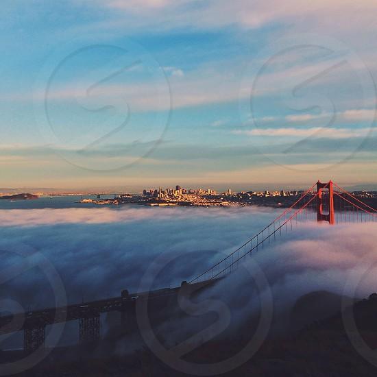 Because fog. photo