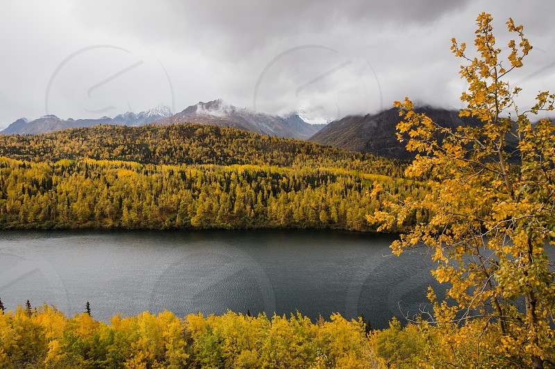 Fall colors in the Alaskan mountians photo