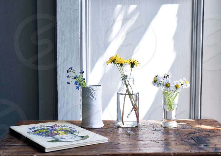 Collection of three vases containing wildflowers on a wooden table in sunray. photo