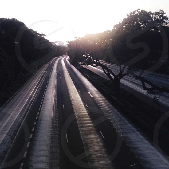 gray asphalt road near trees photo