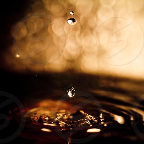 water teardrops macro photograph photo