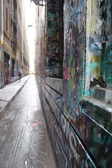 One of Melbourne's infamous graffiti laneways  photo