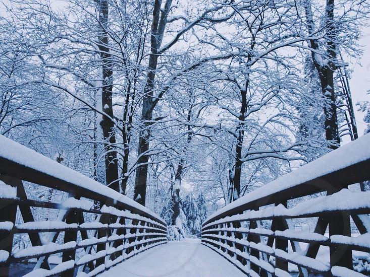 snow covered bridge photo
