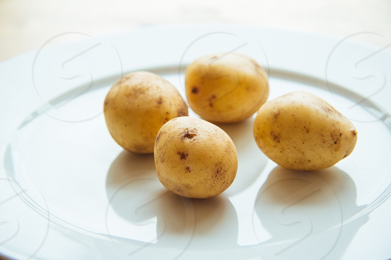 potatoes white plate five yellow round organic allotment countryside city farm organic healthy earthy flavour photo