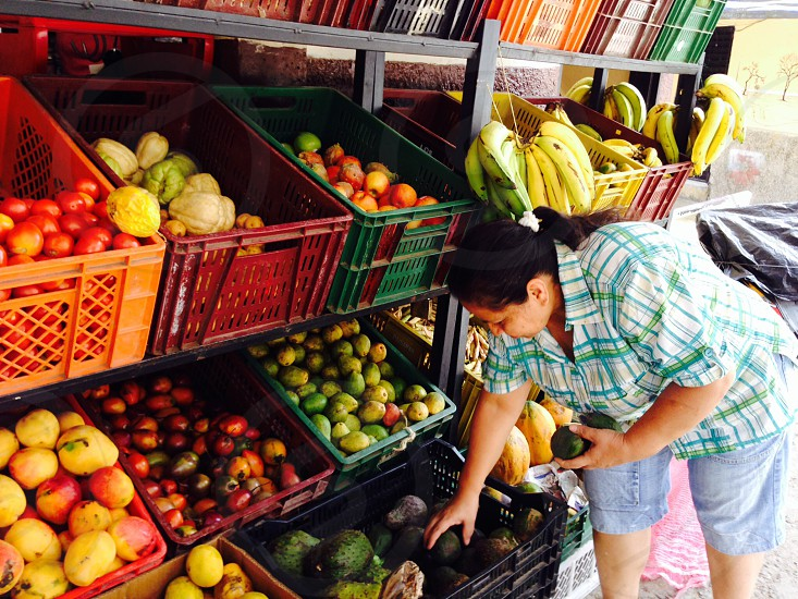 woman holding fruits photo