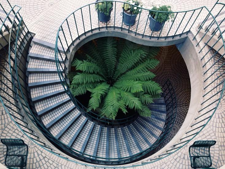 Stairway.  photo