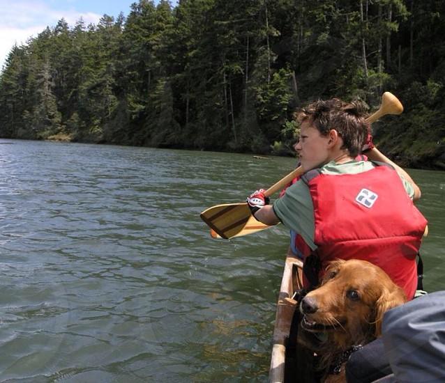 golden retriever beside boy in red floater vest photo
