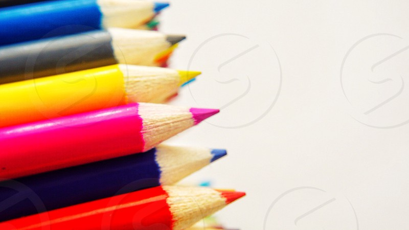 assorted colored coloring pencils photo