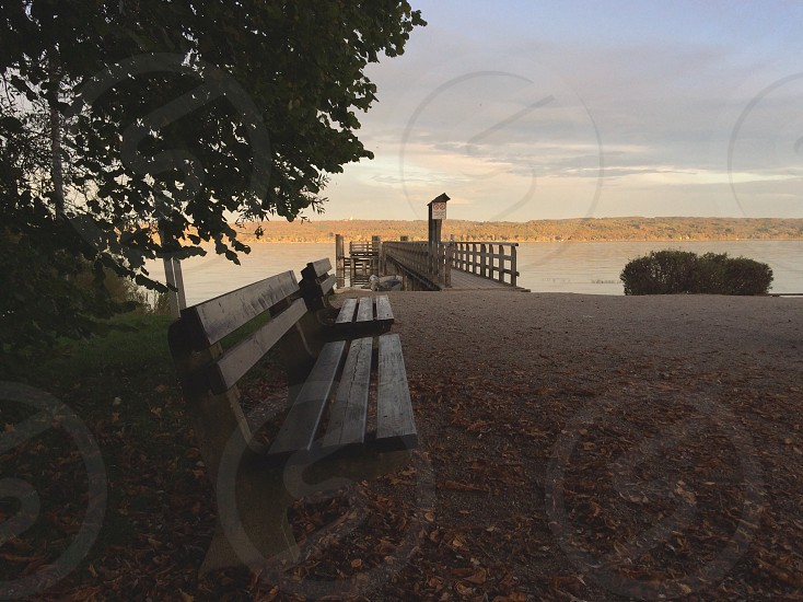 Benches by the lake photo