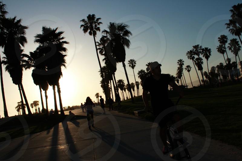 Santa Monica Sunsets photo