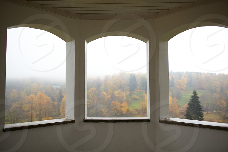 Autumn forest and fog. View from the summerhouse windows. Toila Estonia. photo