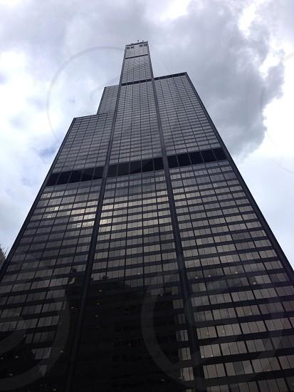Sears/Willis tower  photo