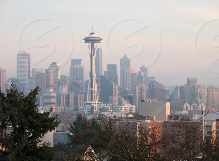 seattle icon building structure skyline muted trees in foreground tranquil peaceful photo