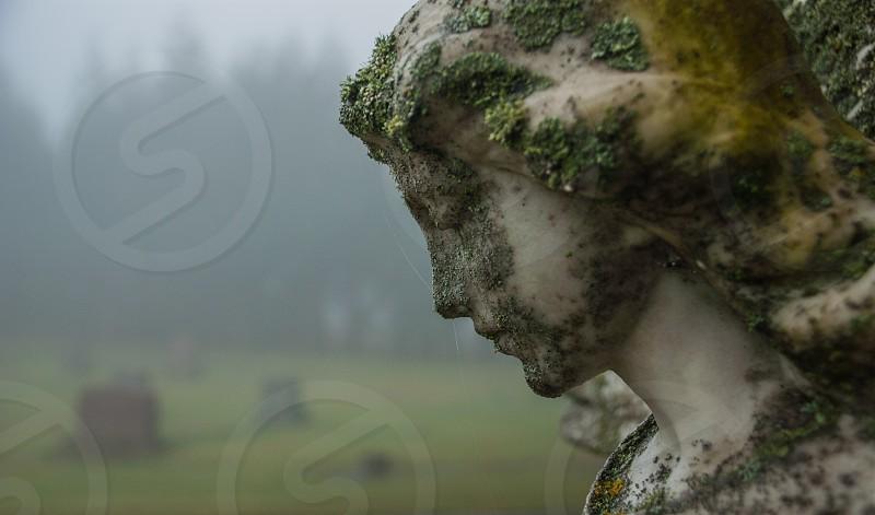 Mt. Calvary Cemetery in Portland Oregon. photo