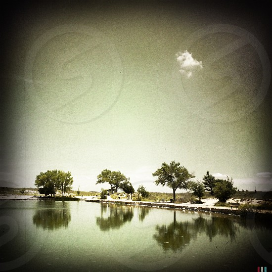 The reflections on a pond in New Mexico  photo