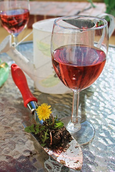 Wine glasses with rose wine on a patio table with garden trowel and watering can photo