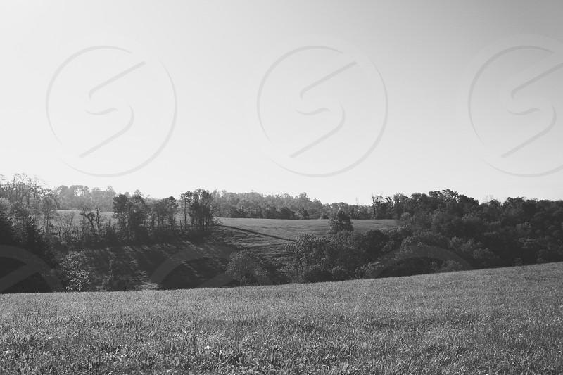 Black & White - Rolling Hills photo