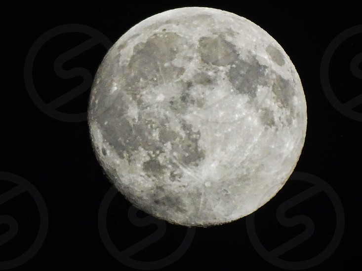 white moon photography photo