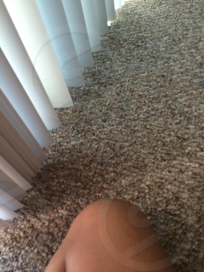 Evening light knee blinds carpet.  photo