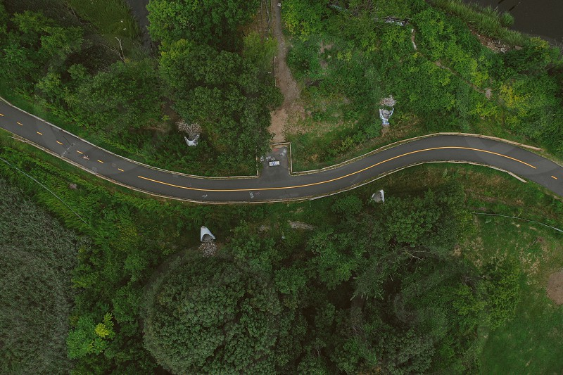 Drone aerial road lines green photo