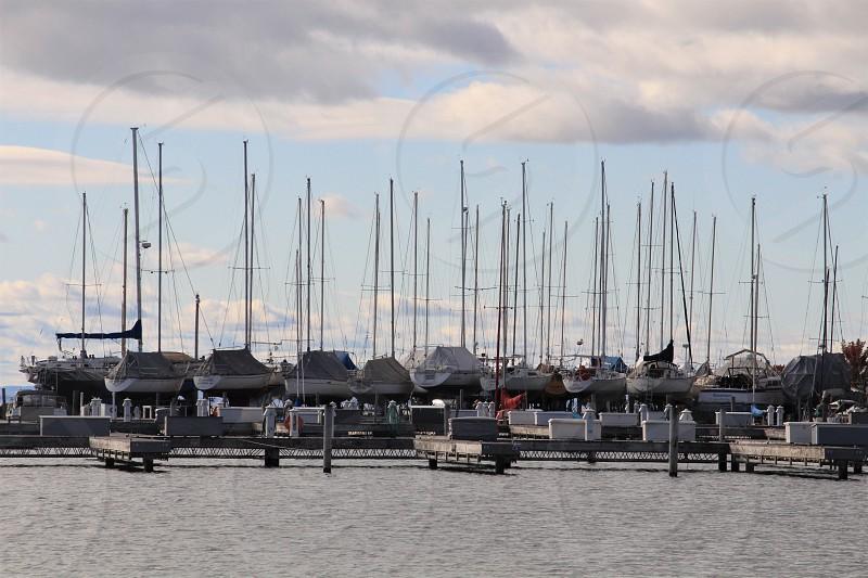 Marina at Bayfield photo