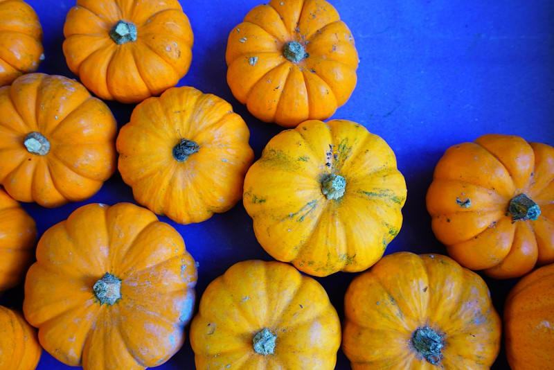 Mini orange pumpkins in bulk at the farmers market in the fall photo