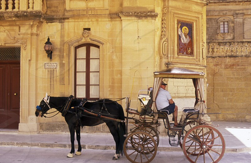 A Hosewagon in the Old Town of the city of Valletta on the Island of Malta in the Mediterranean Sea in Europe.