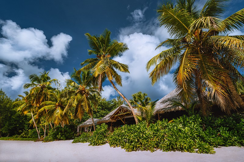 Tropical beach landscape with coconut palm trees and straw roofs. Paradise exotic vacation holidays. photo